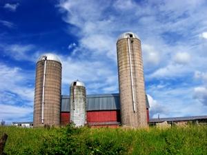 Allegany_Township_silos