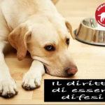 cane il diritto di essere difeso