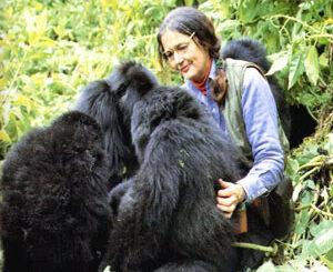 In memoria di Dian Fossey la Signora dei Gorilla