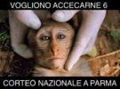 Corteo per i macachi di Parma