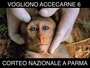 Corteo a Parma per i Macachi