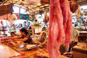 Fermare il commercio di animali domestici e selvatici in Cina